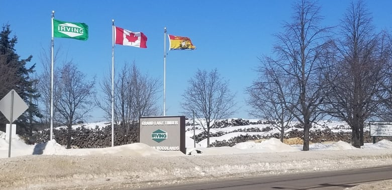 Newcomers fuel largest N.B. population bump in 44 years – CBC.ca